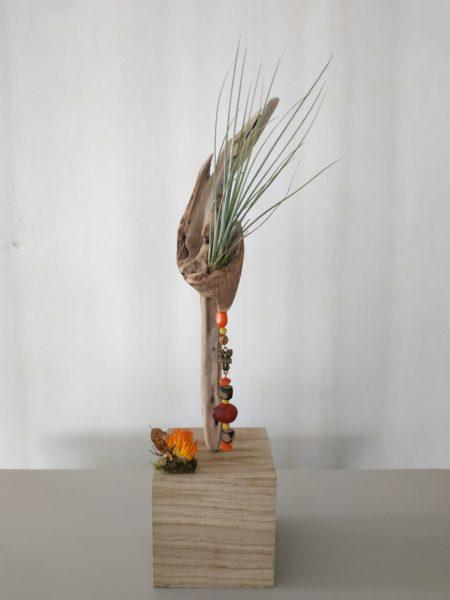 cube en chêne, avec une fleur séchée comme si c'était du corail, un morceau de bois flotté en son centre avec une plante une fille de l'air dedans en son creux. Des graines pendent du creux de la branche sous la fille de l'air