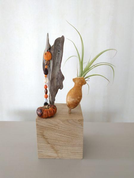 cube décoratif à poser 9cmx9cm avec dessus un morceau de bois flotté d'où des graines pendent à côté le chapeau d'une petite calebasse servant d'amphore à une fille de l'air (tillandsia) et sur un coin se trouve un fruit séché ressemblant à une courge orangée